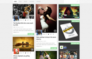 Rengarenk WordPress Teknoloji Teması CapeTown